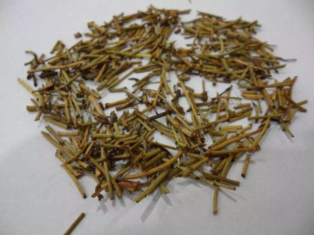 Hình ảnh Vị thuốc Ma Hoàng